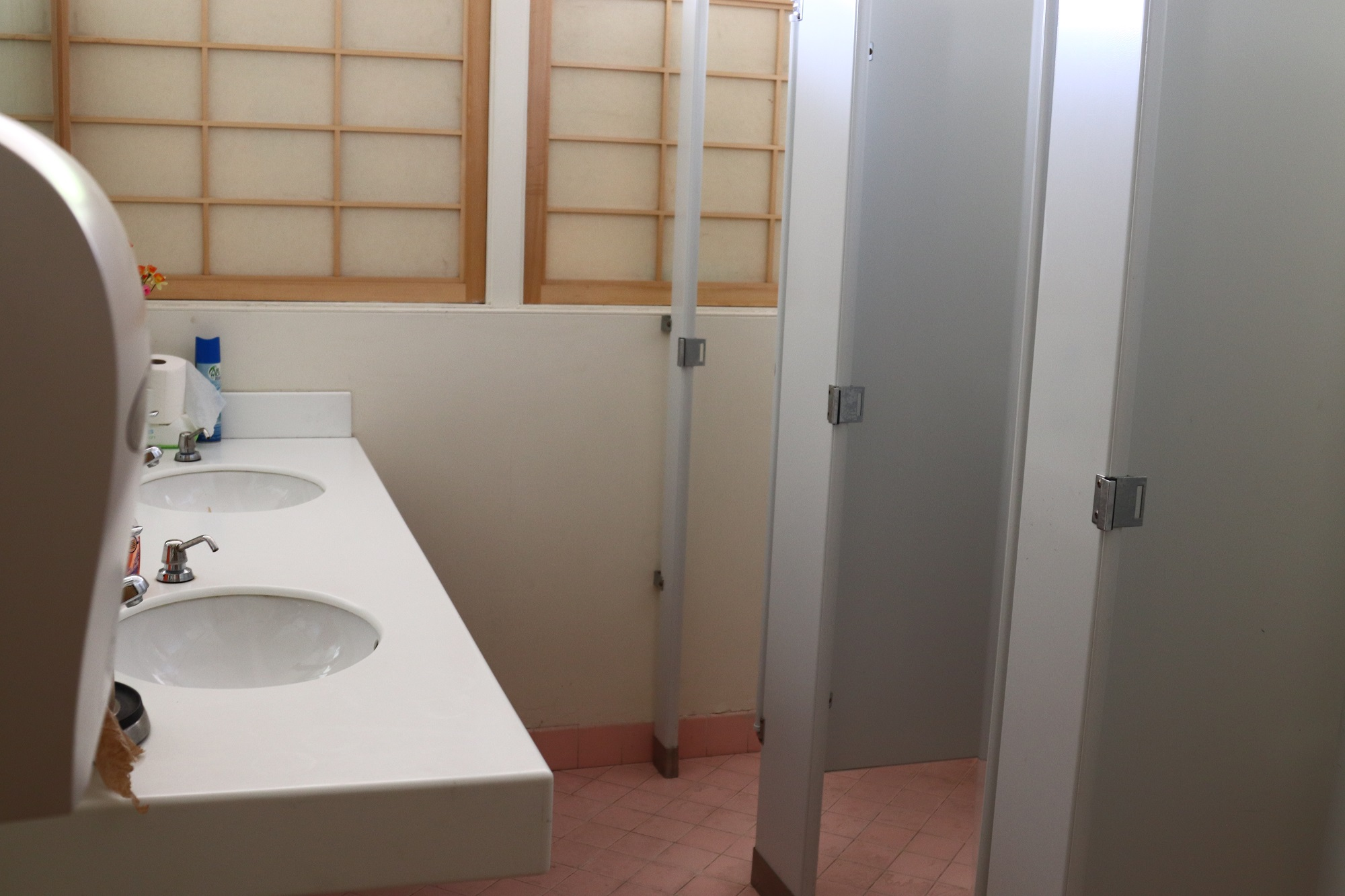 Old Restroom without space for wheelchairs and walkers